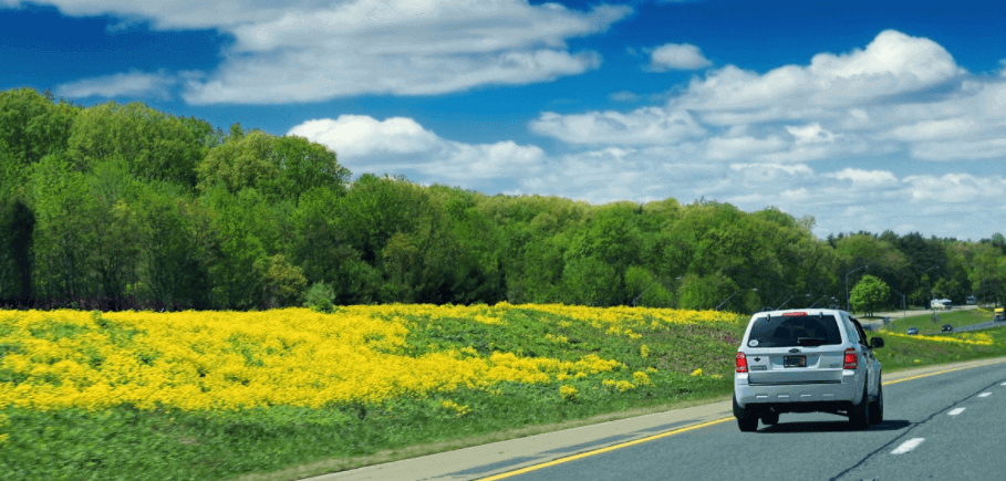 Autocasión MID Car vehículos segunda mano Madrid, Torrejón de Ardoz, Conducción y alergia primaveral Consejos para evitar riesgos al volante